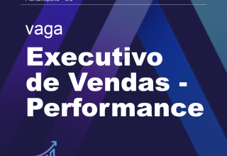Executivo de Vendas – Performance